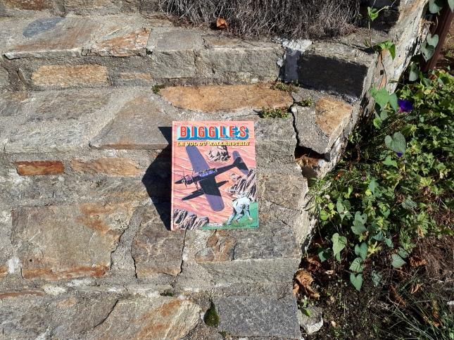 Biggles Book